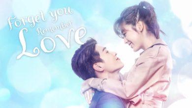 ซีรี่ย์จีน Forget You Remember Love รักยุ่งๆ ของเจ้าชายกบ ซับไทย Ep.1-38 (จบ)