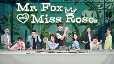 ซีรี่ย์จีน Mr.Fox and Miss Rose (2020) เผ่าวุ่นวายกับนายกะล่อน ซับไทย Ep.1-30 (จบ)