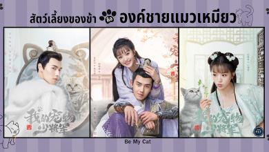 ซีรี่ย์จีน Be My Cat (2021) สัตว์เลี้ยงของข้าคือองค์ชายแมวเหมียว ซับไทย Ep.1-11