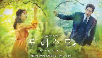 ซีรี่ย์เกาหลี Forest ปริศนา ป่าอัศจรรย์ พากย์ไทย Ep.1-16 (จบ)